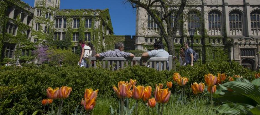 people sitting on a bench in the University of Chicago quad